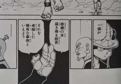 キメラアント編 ラスト