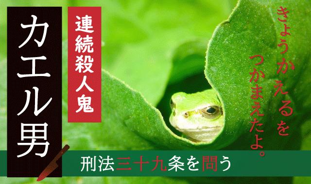 男 カエル